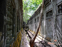 The Temple 2- Beng Mealea.jpg