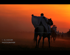 Sunset Knight Benghazi ( [ Libya Photographer ]) Tags: sunset sun sport set canon eos nikon sigma os 7d knight 1855 libya benghazi 70300    d40 alahli  alahly         mygearandme mygearandmepremium mygearandmebronze mygearandmesilver mygearandmegold mygearandmeplatinum mygearandmediamond