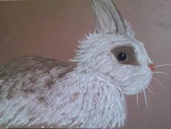 Chalk bunny