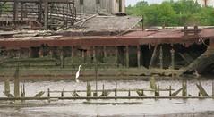 Barge struts (bk rabblerouser) Tags: newyorkcity abandoned boat rust decay statenisland barge arthurkill boatgraveyard