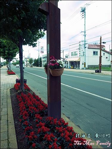 0705GRD東川町午後散步