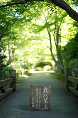 20110928 Kyoto-Ohara 1