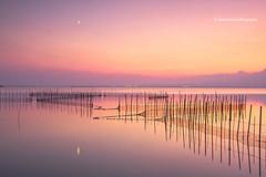 Luces de Otoo (Pepelahuerta) Tags: paisajes valencia lagos cielos atardeceres lakers teleobjetivos laalbufera anawesomeshot canon40d pepelahuerta canon70200isusmf4