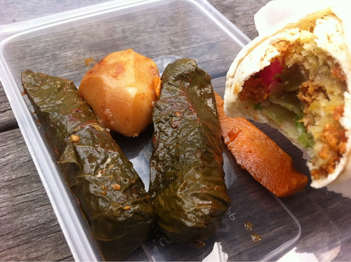 kebab and dolmades from the falafal house
