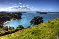 Otuawaea Bay (Slightly Pear Shaped) Tags: ocean newzealand landscape hdr pohutakawa orewa regionalpark mahurangi otuawaeabay otuawaea