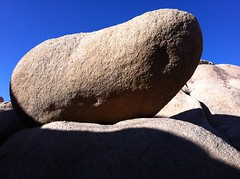 Granite Boulder (fanderaku) Tags: california park blue sky usa southwest tree fall rock automne landscape colorado rocks desert joshua joshuatree boulder bleu boulders ciel national mojave granite paysage parc rocher rochers roche californie désert joshuatreenationalpark granit sudouest etatsunis granitique