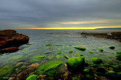 My Scotland (Nicolas Valentin) Tags: uk sea beach scotland eastcoast compelling torness