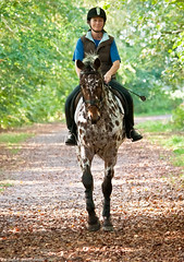 Pale Rider. (Neil. Moralee) Tags: autumn trees horse woman girl hat leaves flickr track award rider neilmoralee