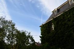 Lich (JasFin) Tags: hessen herbst schloss altstadt schlosspark schlossgarten fachwerk lich giesen