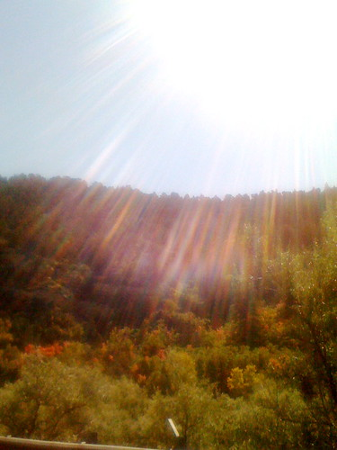 Sierra Nevada's from NV