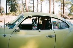 ivan's drivin' (EllenJo) Tags: autumn pets chihuahua dogs vw 35mm volkswagen bostonterrier october ivan az nationalforest fujifilm floyd argusc3 ghia karmannghia argus sundayafternoon mingusmountain october16 200speed prescottnationalforest 8000feet yavapaicounty ellenjo ellenjoroberts autumninarizona mingusmountainrecreationarea