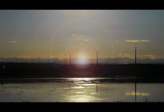 Highwayside Glory (LostMyHeadache: Absolutely Free *) Tags: autumn light sunset shadow mountains fall nature water silhouette landscape reflecting pond nikon highway glow horizon powerlines lensflare davidsmith calgaryalbertacanada