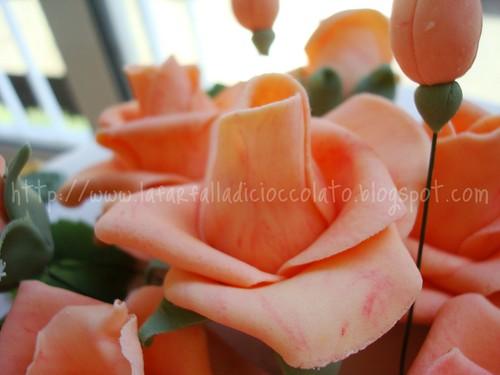 Torta Rose Cameo 2