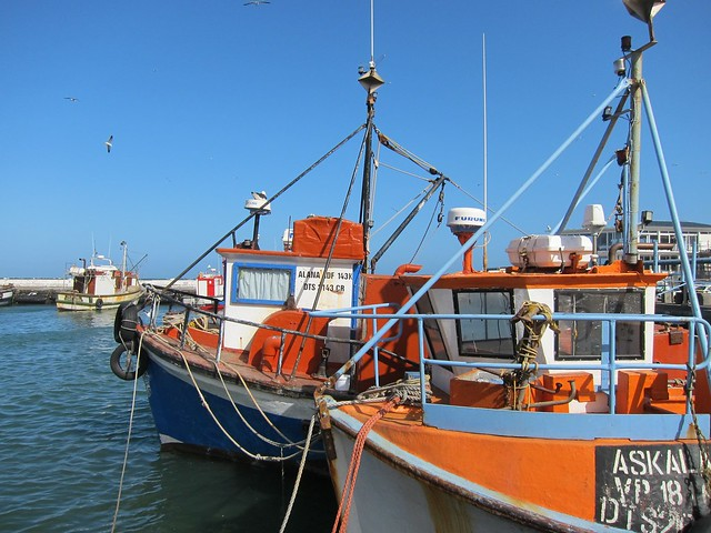 Fishing Boats in Kalk Bay