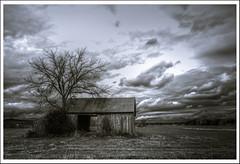 Barn door (subadei) Tags: autumn blackandwhite tree barn rural canon vermont farm sigma ferrisburg 1000d