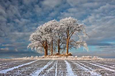 Foto de Robert Fulton (Landscape Photographer of the Year)