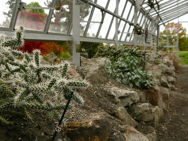 ubc botanical garden 010
