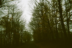 (the april fool) Tags: road trees newyork rural upstate lonely disposable