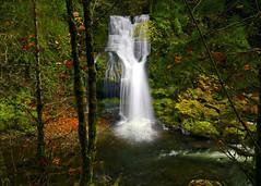 A Fall of Beauty (Darrell Wyatt) Tags: waterfall hdr rockcreek skamania