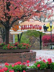 Halloween Week 2011