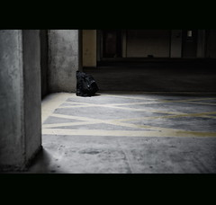 45/52 - Lonely (.avina.) Tags: nikon lowepro 2011 d700 thebig52