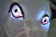 Hati's eyes