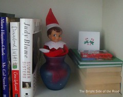 Elf on a Shelf, in a Vase