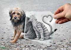 Pencil Vs Camera - 58 (Ben Heine) Tags: dog chien pets cute art love animals cat paper photography graphicdesign fly sketch spain eyes kat couple chat poem different play hand arte heart drawing mixedmedia surrealism duo magic tail main workinprogress creative shy hond coeur dessin lovers moustache melody illusion together amour santiagodecompostela reality expressive imagination series shape dimension dibujo papier bizarre pleasure combination mouche distraction timid croquis saintvalentine faithfulness fidelity 4thdimension photodrawing innovative milosc saintvalentinesday thetelegraph visualconcept benheine pressreview pencilvscamera samsungnx11 loveyoutodaymorethanyesterday simplicitycompany