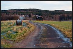 Dirt Road (mmoborg) Tags: sweden sverige dalarna 2011 mmoborg mariamoborg