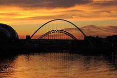 Tyne bridges at sunset (shotlandka) Tags: bridge england water river newcastle tyne quayside artistoftheyearlevel2