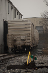 Reefers (Hogarth Ferguson) Tags: railroad 3 train photography graffiti md nikon focus industrial maryland baltimore boxcar 28 manual facility load freight reefer 135mm unload csx rollingstock reefers d90 manuallens refrigeratedboxcar