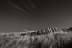 Old Fence (gregheath) Tags: fence scotland fife elie