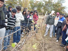 Centro de desarrollo vitícola Media Agua: Integran a jóvenes vitivinícolas