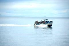 Crab Boat
