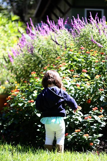 sloaney in garden