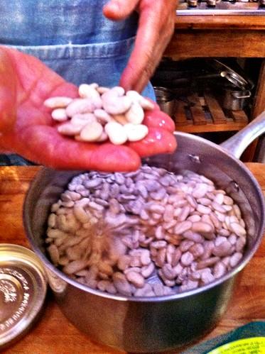 White beans soaking