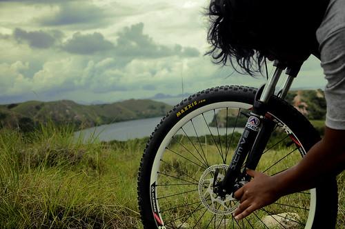 bike for green earth