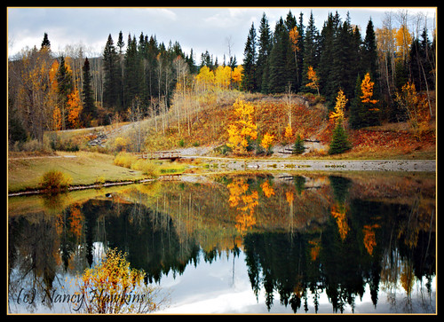 Reflections of the Fall by Nancy Hawkins