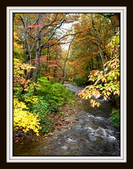 Mountain Stream (cscott_va.) Tags: virginia scene sherandolake fall2011