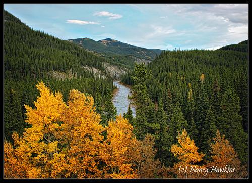Up River by Nancy Hawkins