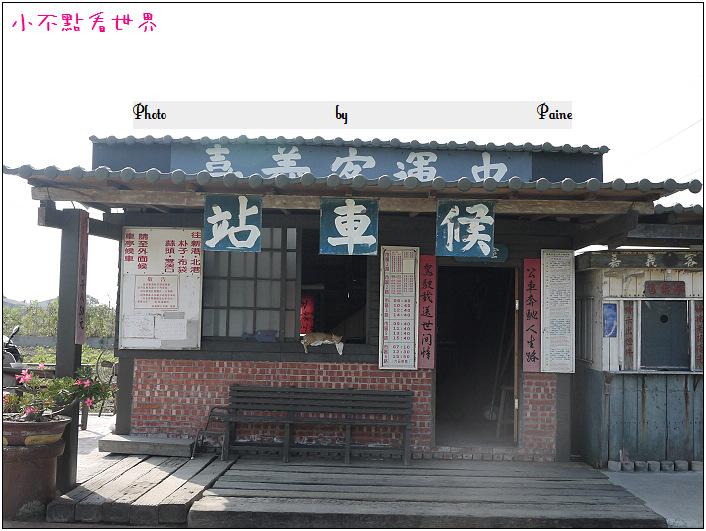 新港頂菜園 (31).JPG