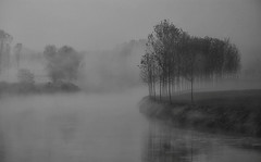 quando la nebbia la fa da padrona (mat56.) Tags: trees white nature water monochrome misty fog alberi river monocromo landscapes back fiume atmosphere natura nebbia acqua paesaggi bianco lombardia nero lodi pianura ansa lambro atmosfere lodigiano padana mat56 livraga mygearandme mygearandmepremium mygearandmebronze mygearandmesilver cademazzi