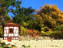 (:Linda:) Tags: tree germany town cabin bluesky jena thuringia blauerhimmel halftimbered fachwerk timberframing weinbauernhaus vineyardhouse wolkenloserhimmel weinberghaus westviertel autumnaltree weinberghuschen vineyardcabin