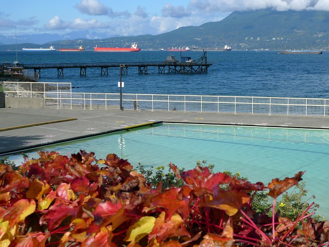 Autumn at Kits Pool