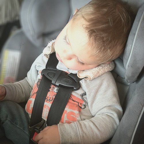 Comfy Carseat
