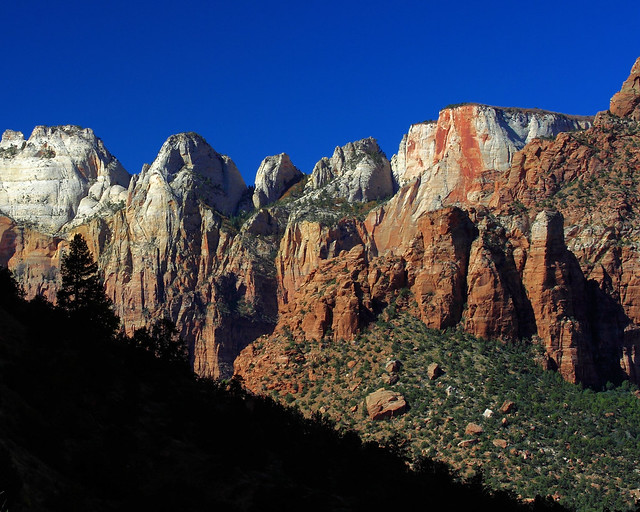 8x10 Zions National Park IMG_2324