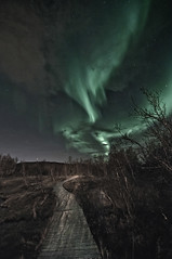 Northern light, 26th of October 2011 (Per Ivar Somby) Tags: auroraborealis troms nordlys northernlight polarlight polarlys stakkevollan rundvannet