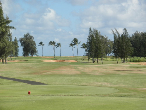 Turtle Bay Colf Course 118