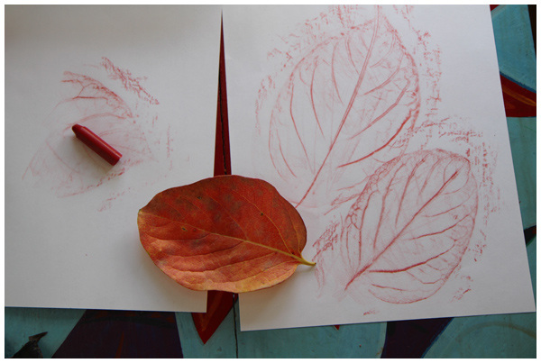 Persimmon leaf rubbings