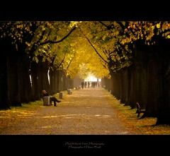 . ..the beautiful way.. . (oliver's | photography) Tags: autumn photoshop canon germany way landscape eos october flickr raw image  adobe copyrighted lowersaxony maschsee 2011 digitalcameraclub pixelwork oliverhoell pixelwork11photography copyright2011bypixelwork thebeautifulway allphotoscopyrighted
